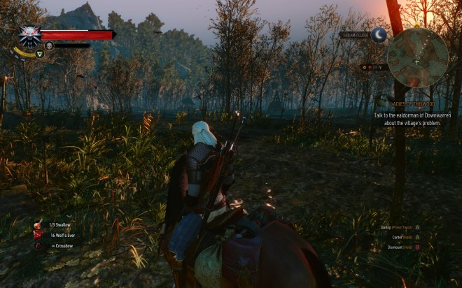 Witcher3 Swamp